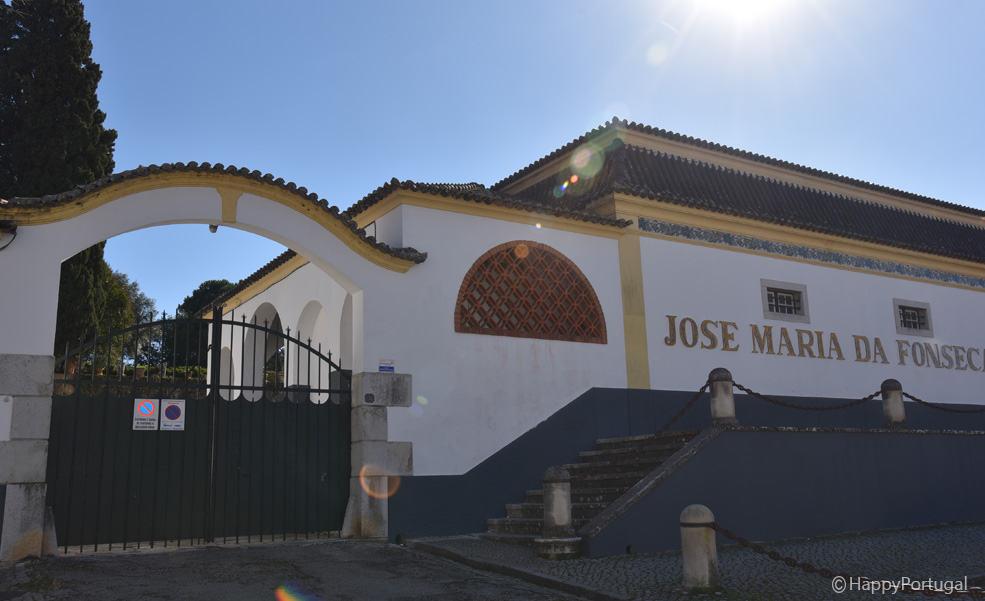 Tour Arrábida, HappyPortugal